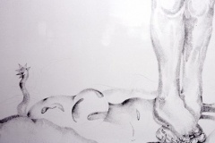 Detail, Uncomfortable Position, 2005, conte on wall, wall drawing installation, El Centro College Gallery, 15' x 10'