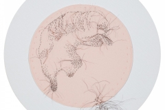 """Detail, Ancestry of Anger, 2016, hand-sewn human hair on fabric, each 8"""" diameter"""