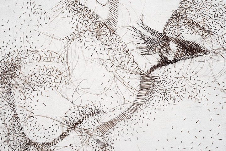"""Detail, Peck, not Prick, 2014, hand-sewn human hair on canvas. 31"""" x 25"""""""